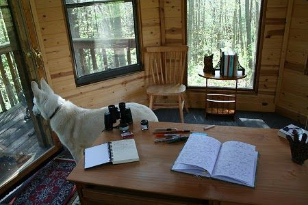 Neil Gaiman's writing gazebo...Author of Coraline and The Graveyard Book