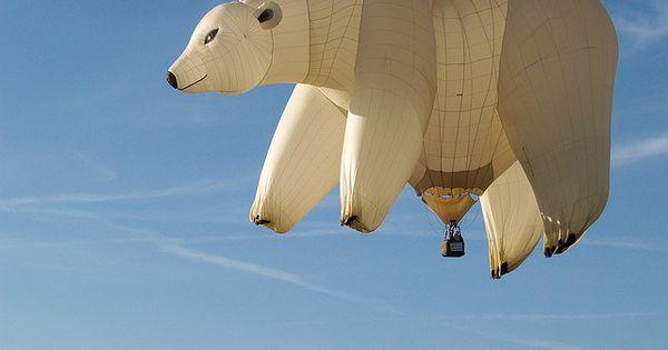 polarbear airballoon