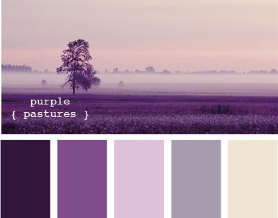 purple color scheme