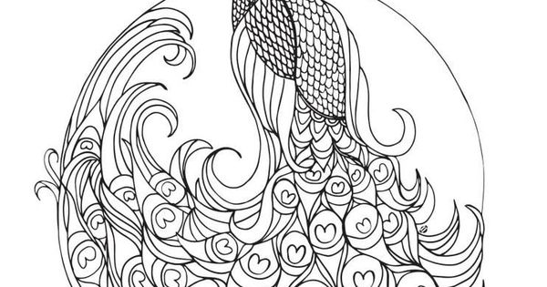 Peacock Coloring Pages Colouring Adult Detailed Advanced