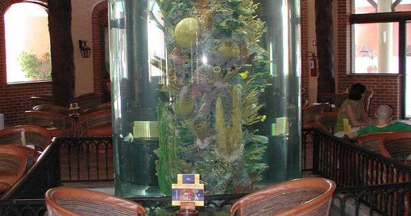 Vertical coral reef aquarium fish tank aquariums for Vertical fish tank