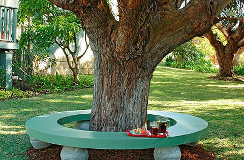 How To Make A Seat Around A Tree Better Homes And
