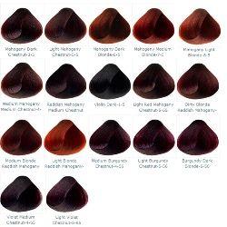Details About Mahogany Violet Burgundy Professional Hair Colour