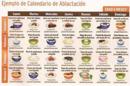 Guia De Ablactacion Para Los 7 Y 8 Meses Bebes De Abril 2013