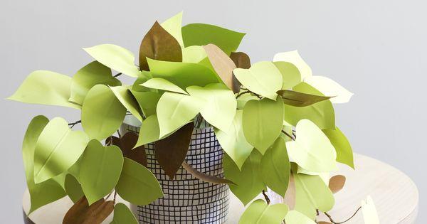 coup de coeur un diy de plantes en papier maison plantes et papier. Black Bedroom Furniture Sets. Home Design Ideas
