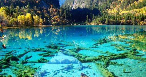 Crystalline Turquoise Lake, Jiuzhaigou National Park, China - Although China was never