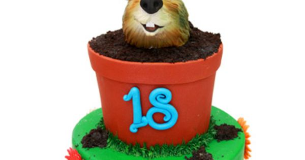 Groundhog Day Birthday Cake » Birthday Cakes | Groundhog day ...