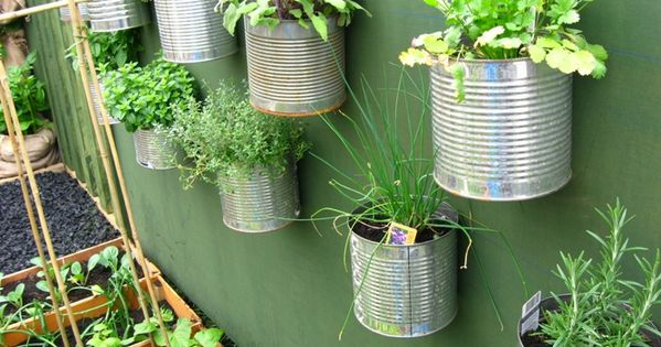 Vegetable Garden Ideas: Wall garden