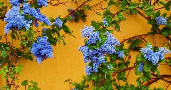 Spring Aesthetic Tumblr Aesthetic Desktop Wallpaper Spring Aesthetic Blue Aesthetic Tumblr