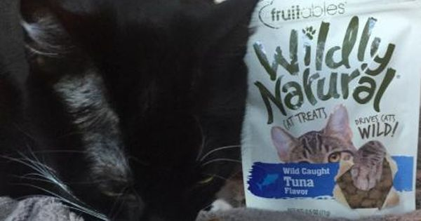 Fruitables Wildly Natural Cat Treats Modern Cat Natural Cat Treats Cat Treats Modern Cat