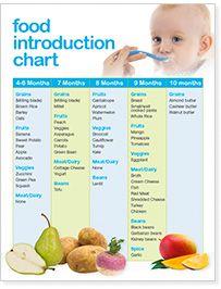 Baby Bullet Nutribullet Baby Bullet Food Blender Baby Food Chart Baby Food Recipes 7 Month Old Baby Food