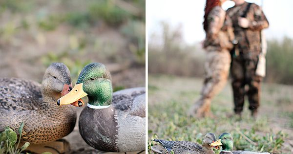 Duck Hunting Maternity shots, decoys for the girls? Almost exactly what Ty