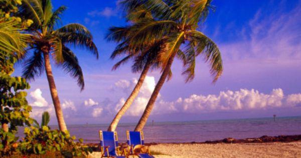 Palm Trees And Beach Chairs Florida Keys USA