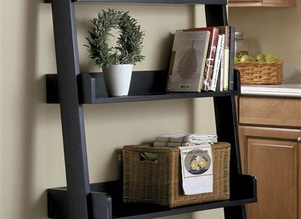 I love ladder bookcases... use in dining room or kitchen or bathroom
