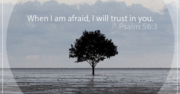 When I am afraid, I will trust in you. Psalm 56:3 -