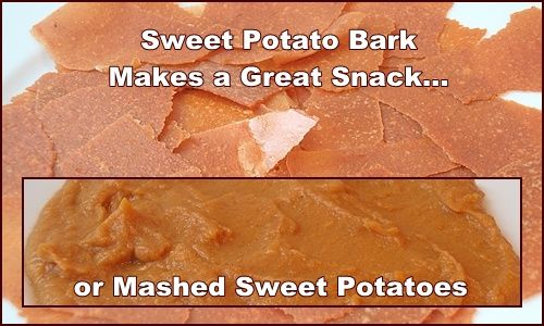 Sweet Potato Bark Paleo Backpacking Food Sweet Potato