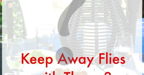 Amazing Trick For Repelling Flies At Your Next Outdoor