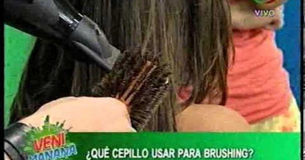 T cnica para secar el cabello profesionalmente con el - Como limpiar casas profesionalmente ...