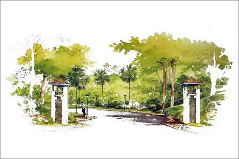 Landscape Architecture: Beautifying Your New Home