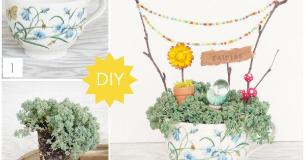 Gardens, Miniature and Tea cups on Pinterest
