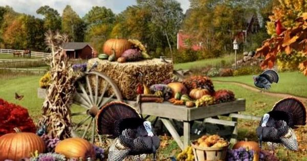 thanksgiving on the farm family nature autumn fall beauty