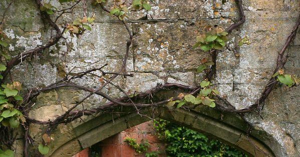 Sudeley castle gardens dise os de fondo detalles for Jardin secreto wine