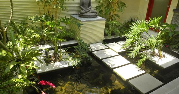 Koi fish pond ideas with direct sunlight suitable for for Fish suitable for small pond