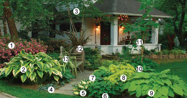 Shade garden front yard