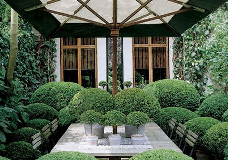 The Holland Park is an amazing and inspiring garden designed by Anouska