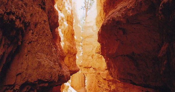 bryce canyon, utah - by katie de bruycker, via Flickr