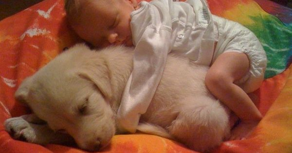 A baby snuggling with a baby dog. So sweet.