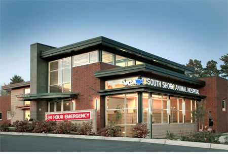 Two Veterinary Hospitals That Prove The Industry Has Changed Medical Clinic Design Hospital Design Architecture Hospital Design