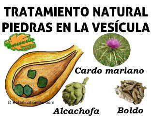 beneficios de la alcachofa y el boldo en pastillas