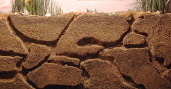 ant farms - conceptural structure ideas | Aula | Pinterest