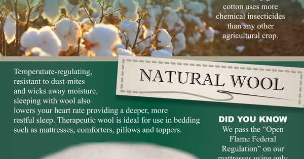 CozyPure Only Uses Simple Organic Ingredients In The