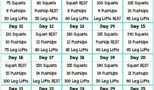 30 Day Challenge Squat Pushup Leg Lift Fitness