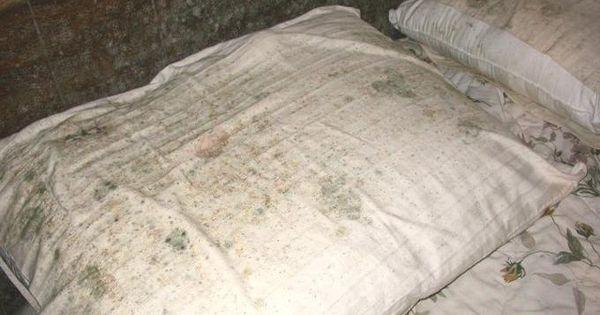 7 astuces pour enlever des taches de moisissure sur du - Enlever tache sur canape tissu ...
