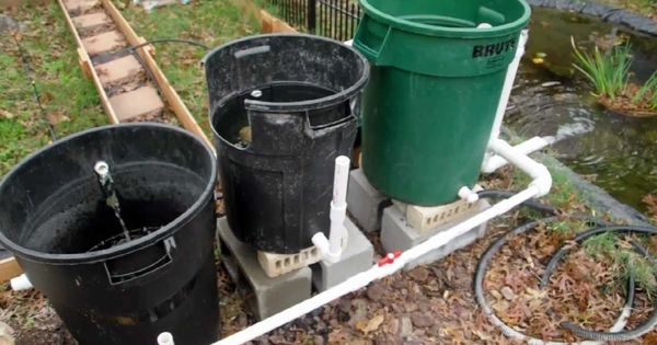 Cheap diy bio pond filter that works backyard for How to build a koi pond on a budget