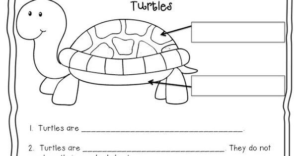 Here's a simple page for writing about turtles. | Animals ...