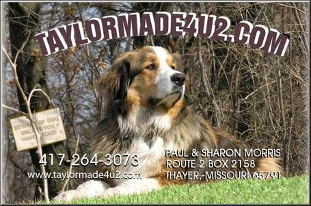 At Taylormade4u2 We Specialize In Mixed Breed Puppies Such As Golden Retriever Cocker Spaniel Mixes Call Us Today About Dogs Mountain Dogs Mixed Breed Puppies