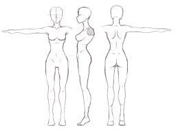 Image Result For Female Human Blueprints Desenho Corpo Humano