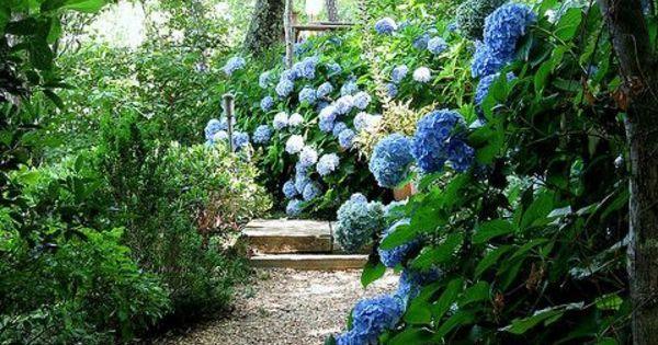 cr er le plus beau jardin avec le gravier pour all e d co et d coration. Black Bedroom Furniture Sets. Home Design Ideas