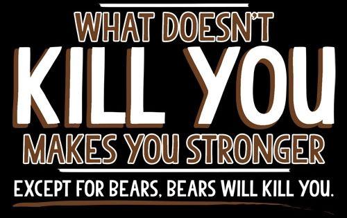 how to kill bears 7