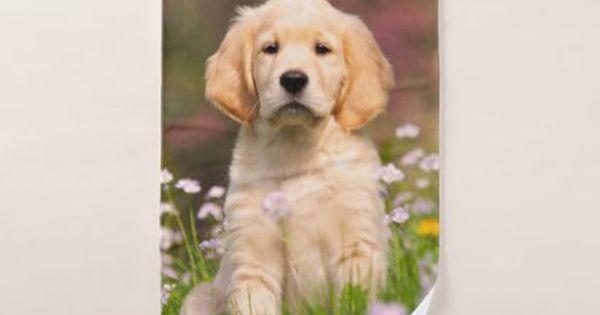 Cute Golden Retriever Dog Puppy Face Animal Photo Bath Towel Set