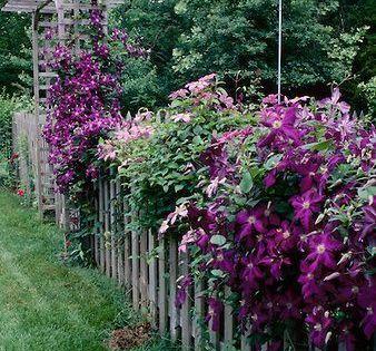 Netzero Message Center Garten Cottage Garten Vorgarten