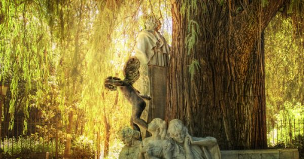 Weeping Willow and Statues. What a great place to sit and read
