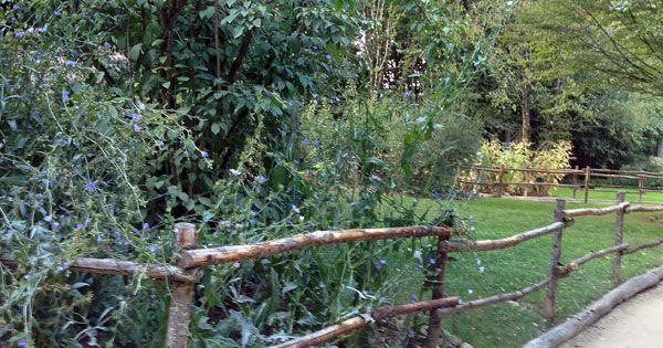Barri re bois brut jardin pinterest barriere bois for Barriere bois jardin
