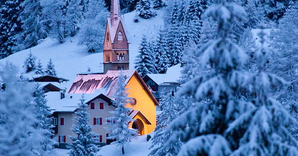 The Dolomites, Snow Forest, Italy ...winter wonderland
