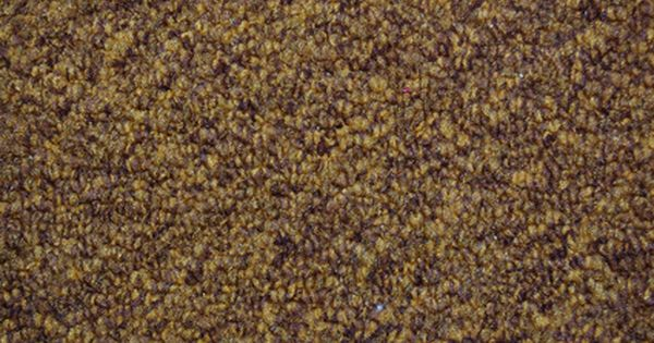 How To Dye Your Carpet With Rit Dye Ehow Dye Carpet Diy Carpet Dye Carpet With Rit