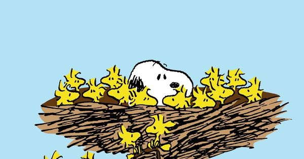 Snoopy, Woodstock and Friends Sleeping in a Giant Bird's ...: https://www.pinterest.com/pin/165788830013825857/